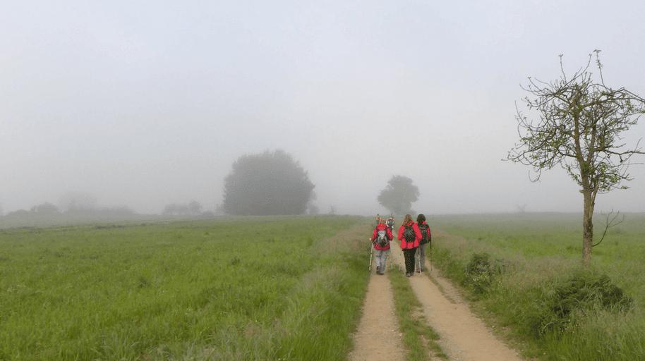 The Reason Why So People Walk the Camino de Santiago