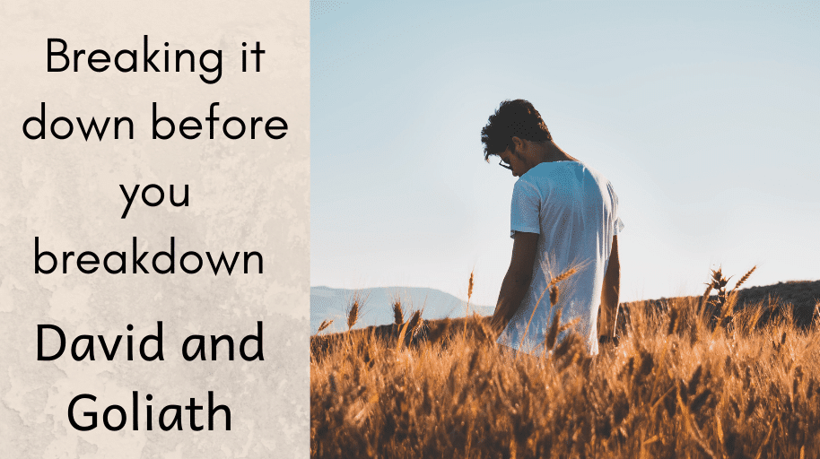 Breaking it down before you breakdown David and Goliath Mental Health