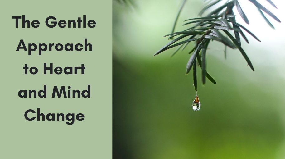 The Gentle Approach to Heart and Mind Change