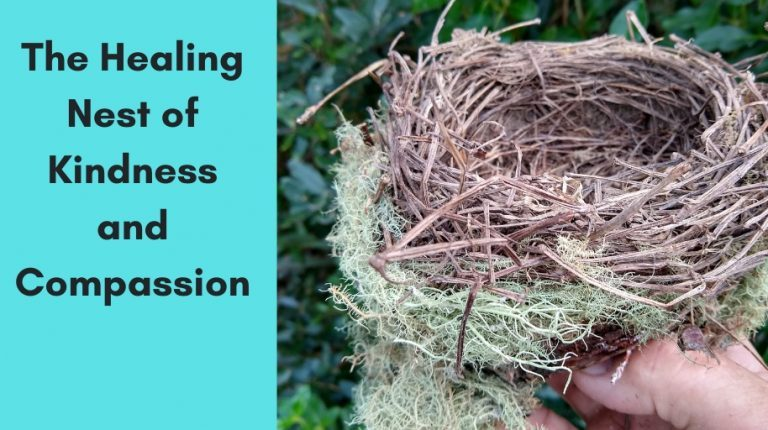 The Healing Nest of Kindness and Compassion